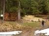 salita e legna lungo il sentiero