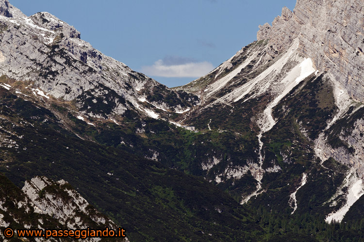img_2330forcella-piccola